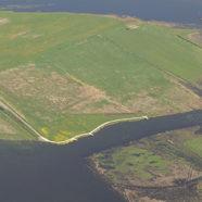 Ny bro over Vilsted Sø øger mulighed for rundture i naturområdet.