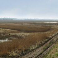 Natura 2000 projekt i Reservatet ved Gyldensteen